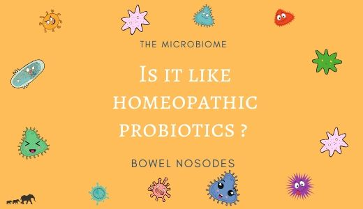 Is it like homeopathic probiotics?