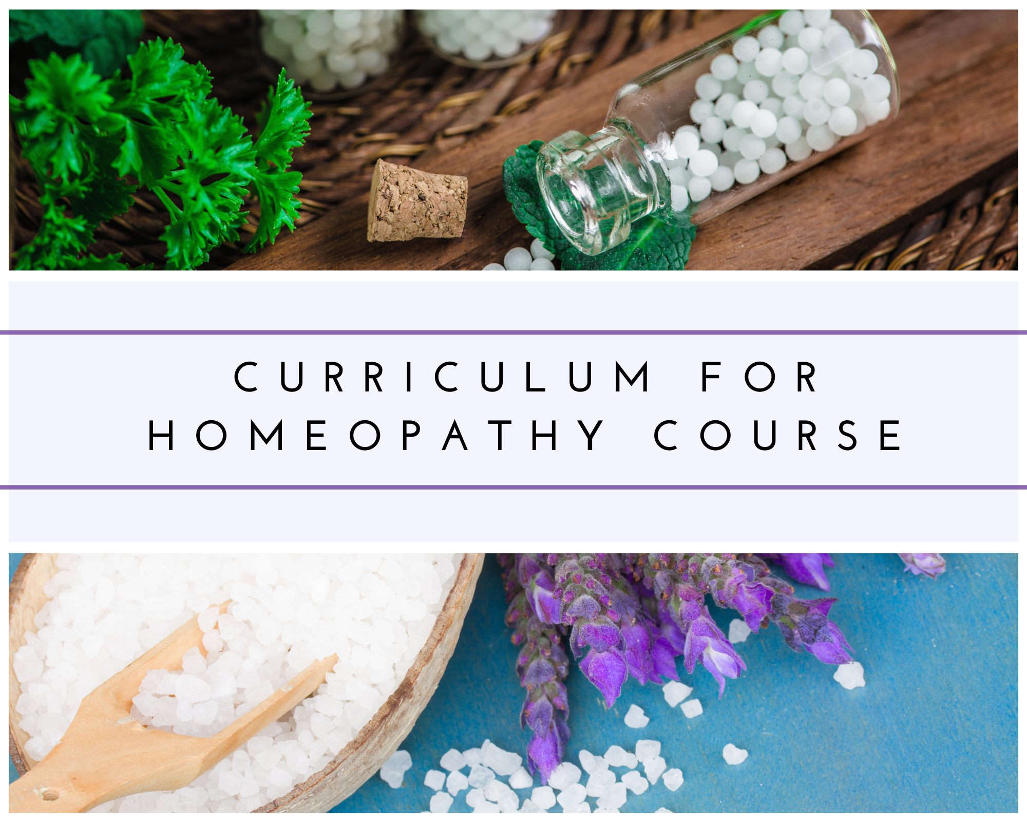 CURRICULUM FOR HOMEOPATHY COURSE